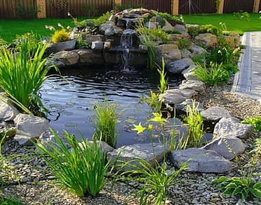 backyard-pond-designs-small