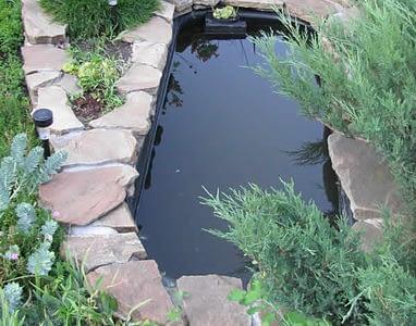 пруд-из-ванны (3)